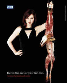 Killing Animals For Fur Essay - image 10